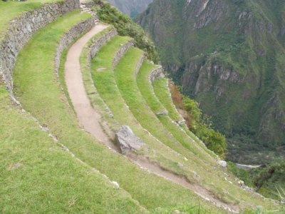 Terraced fields, Machu Picchu