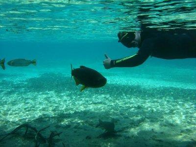 Ben the snorkeler