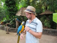 Ben having a serious word to the button-eating parrot!