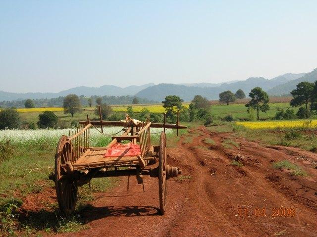 large_ox cart.JPG