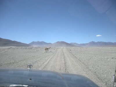 Bolivian Highway
