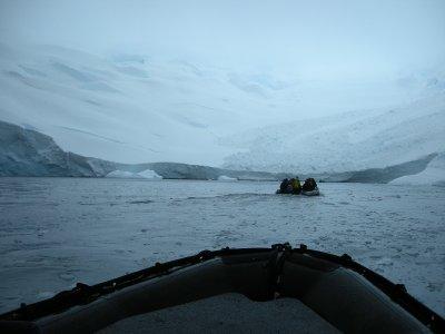 Cold Zodiac Cruising- Hannusse Bay, Hanson Island