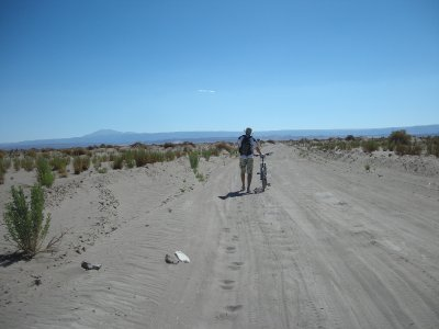 Were on a road to nowhere- riding to Laguna Cejar- too sandy in spots to ride