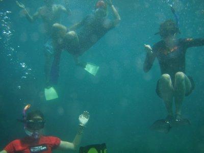 sarah adam and nelle snorkel
