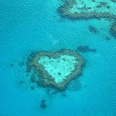 Heart Reef, Happy Ruby wedding anniversary to my ma and pa