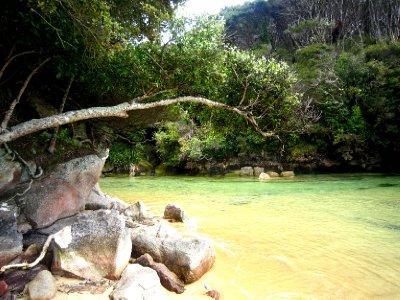 Abel Tasman, Watering Cove