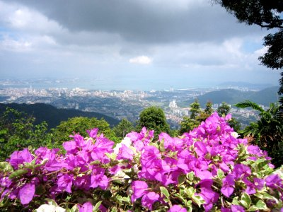 View from top of Penang Hill