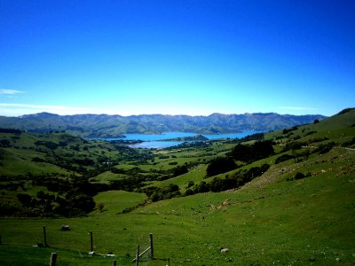 On the drive to Akaroa