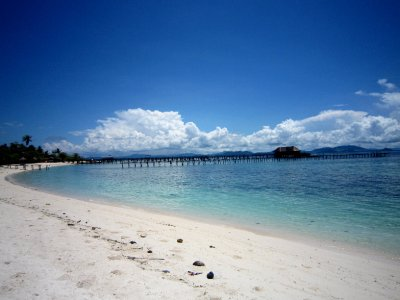Scuba Junkies Beach