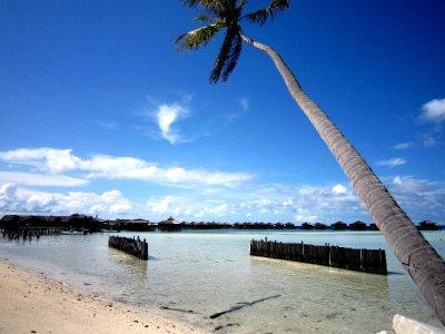 The expensive resort next door on Mabul Island