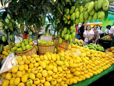 mangoes?