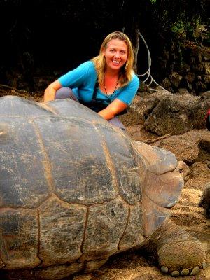 Giant tortoise at Charles Darwin Research Centre, Santa Cruz