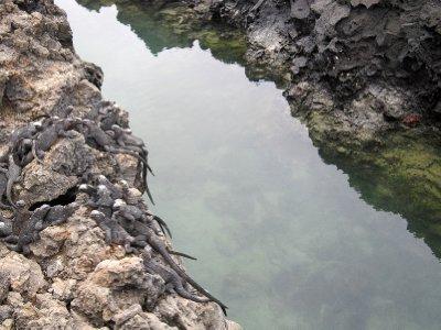 Los Tintereras islet