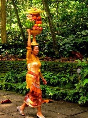 monkey forest offerings