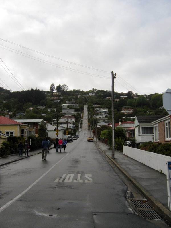 Steepest street in the world!