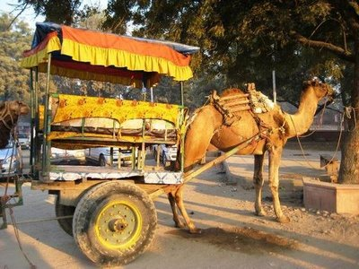 our ride on the way to Taj Mahal
