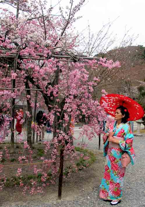 Kyoto Tour