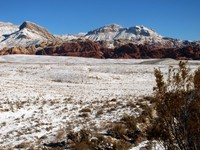 Red Rock Conservation Area.