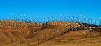 Tehacipi_windmills123.jpg