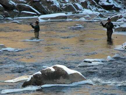Fly Fishing Snowbird Creek