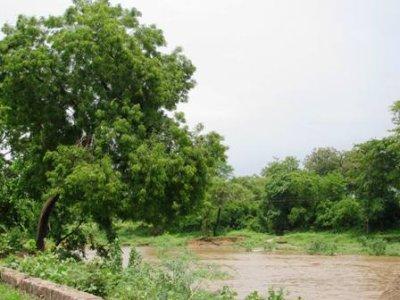 Khajuraho_River.jpg