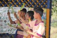 cambodia_527.jpg