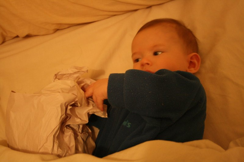 Little Benedict, circa 5 months old