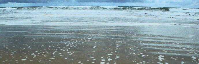 Seashore, Venus Bay