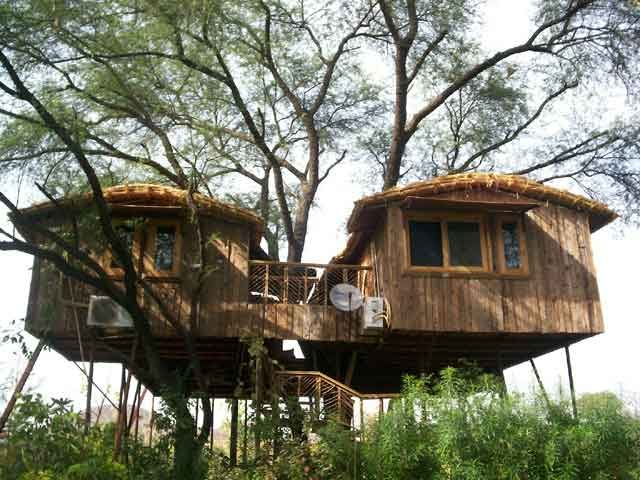 tree house cottages