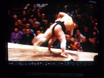 Sumo TV