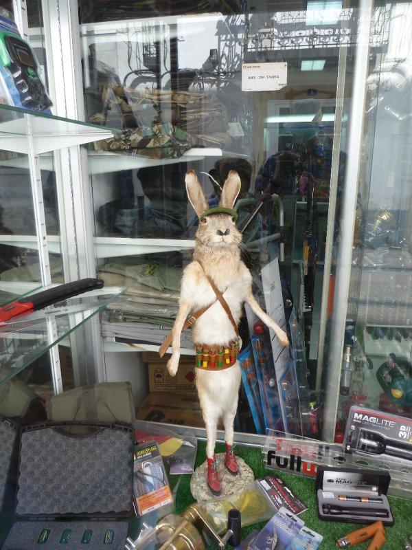 rabbits revenge