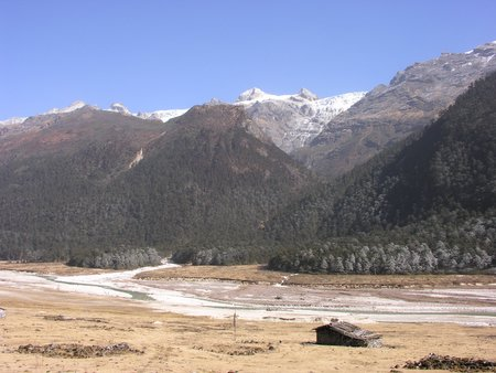 The Yumthang Valley