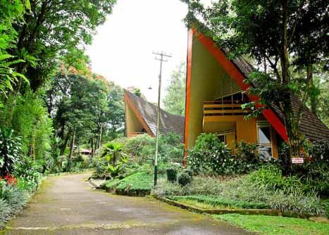 Puncak, West Java-Indonesia