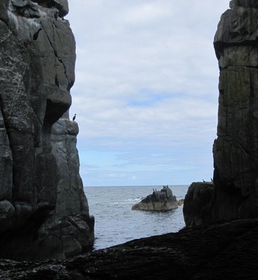 Pigeon Cove