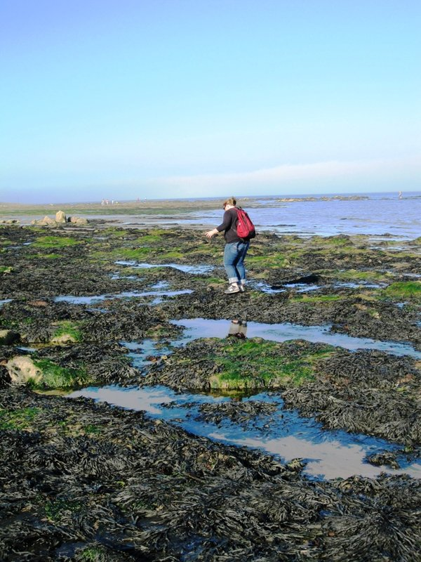 Annie in the Tidal Pools