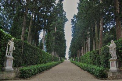 Cypress Alley, Boboli Gardens