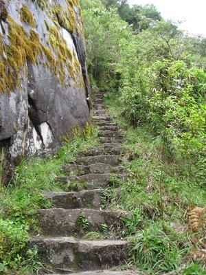INC_D4 - Steep Incan steps