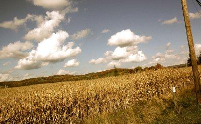 2012_Hudson_Copake_03.jpg