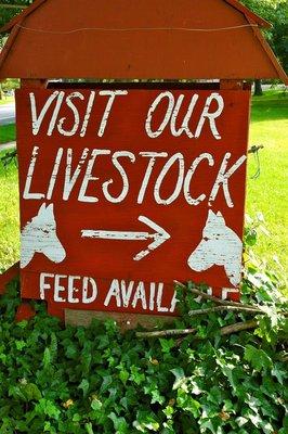 2012_Livestock_1.jpg
