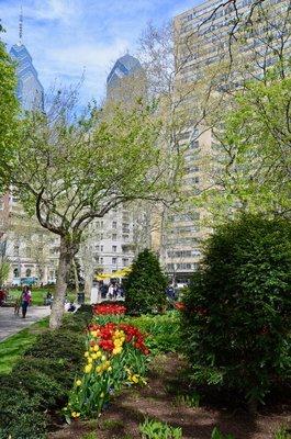 2015_Philly_gardens_-_1.jpg