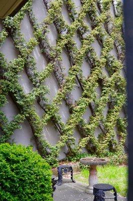 2015_Philly_gardens_-_7.jpg