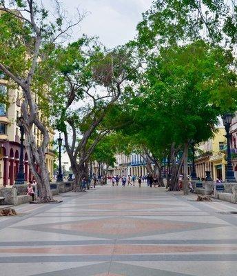 2017_Cuba_beauty3_-_2.jpg