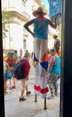 2017_Havana_LaLuz__-_15.jpg