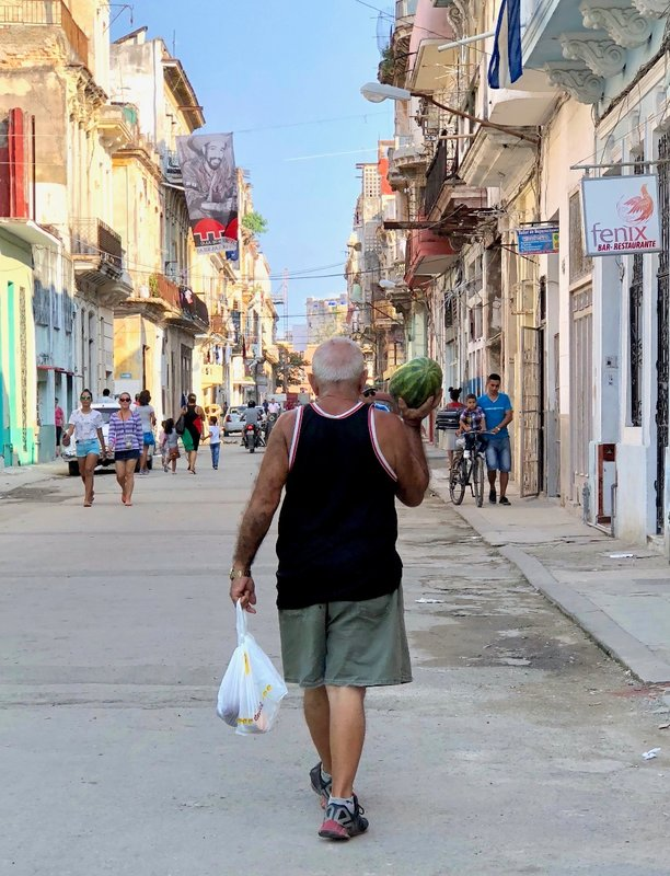 large_2017_Cuba_buzz2_-_1.jpg