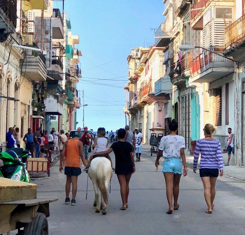 large_2017_Cuba_buzz2_-_2.jpg