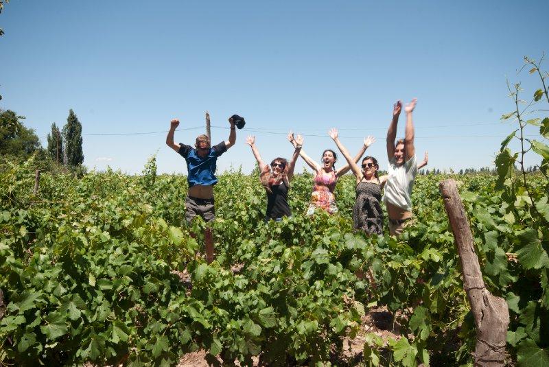 Hooray for wine!