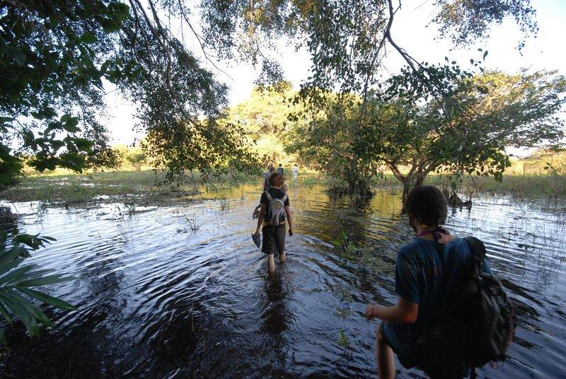 Pantanal Trek