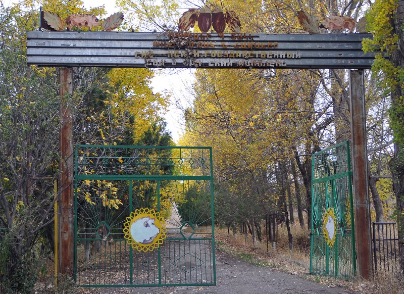 sisian turn left at the animals