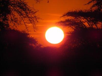 Serengeti 5June2010 115