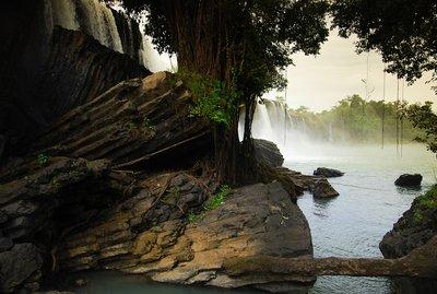 Waterfall in the jungle